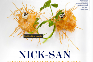 Nicksan-Los-Cabos-Reviews-003